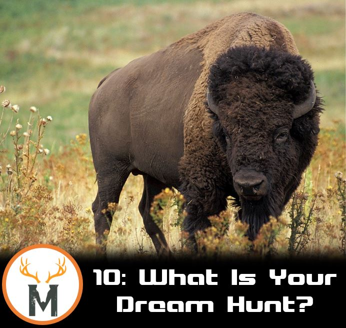 What is your dream hunt?